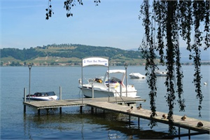 Picture Hotel Bad Muntelier Am See